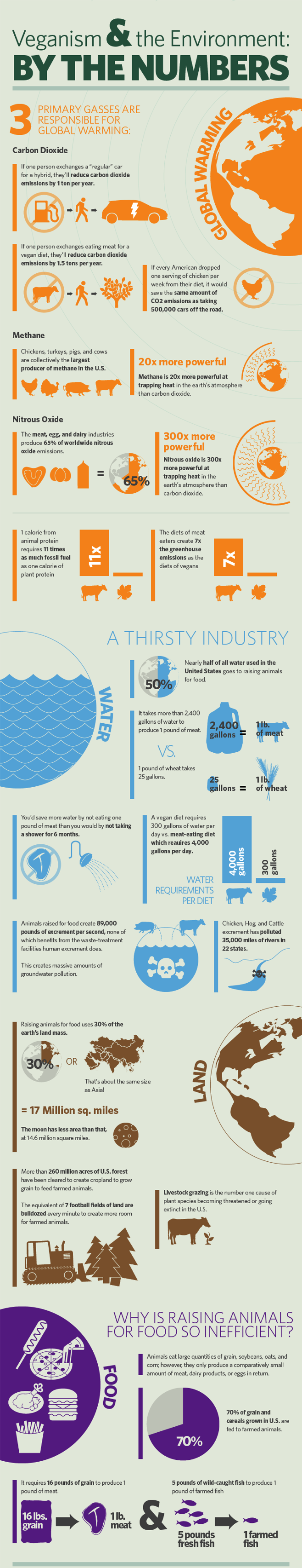 the environmental costs of animal agriculture